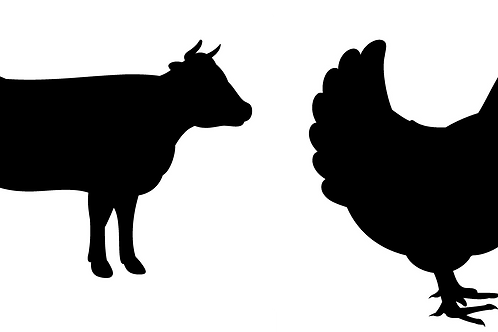 Beef and Chicken
