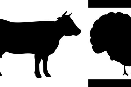 Beef & Turkey