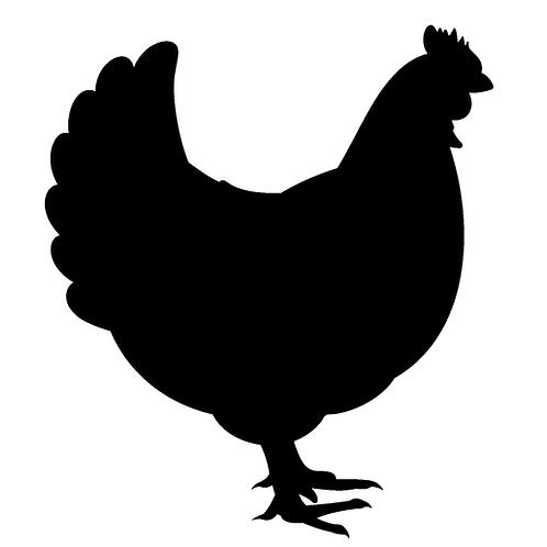 Everyday Chicken
