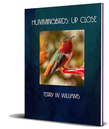 mockup_new_hummer_book.jpg