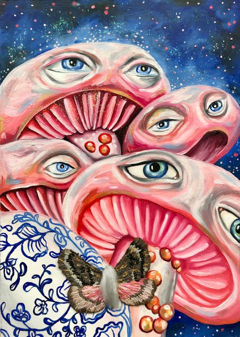 Mushroom Study