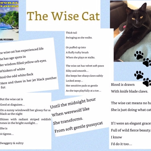 The Wise Cat poetry print