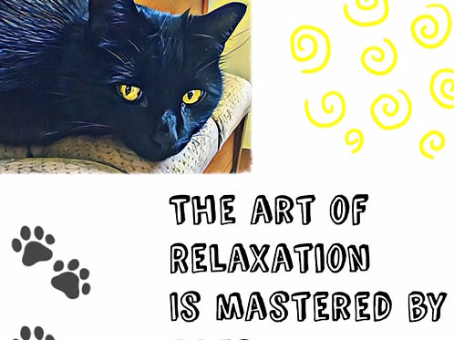 The Art of Relaxation is Mastered by Cats poetry quote
