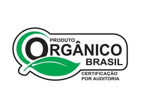 O alimento orgânico e seus benefícios