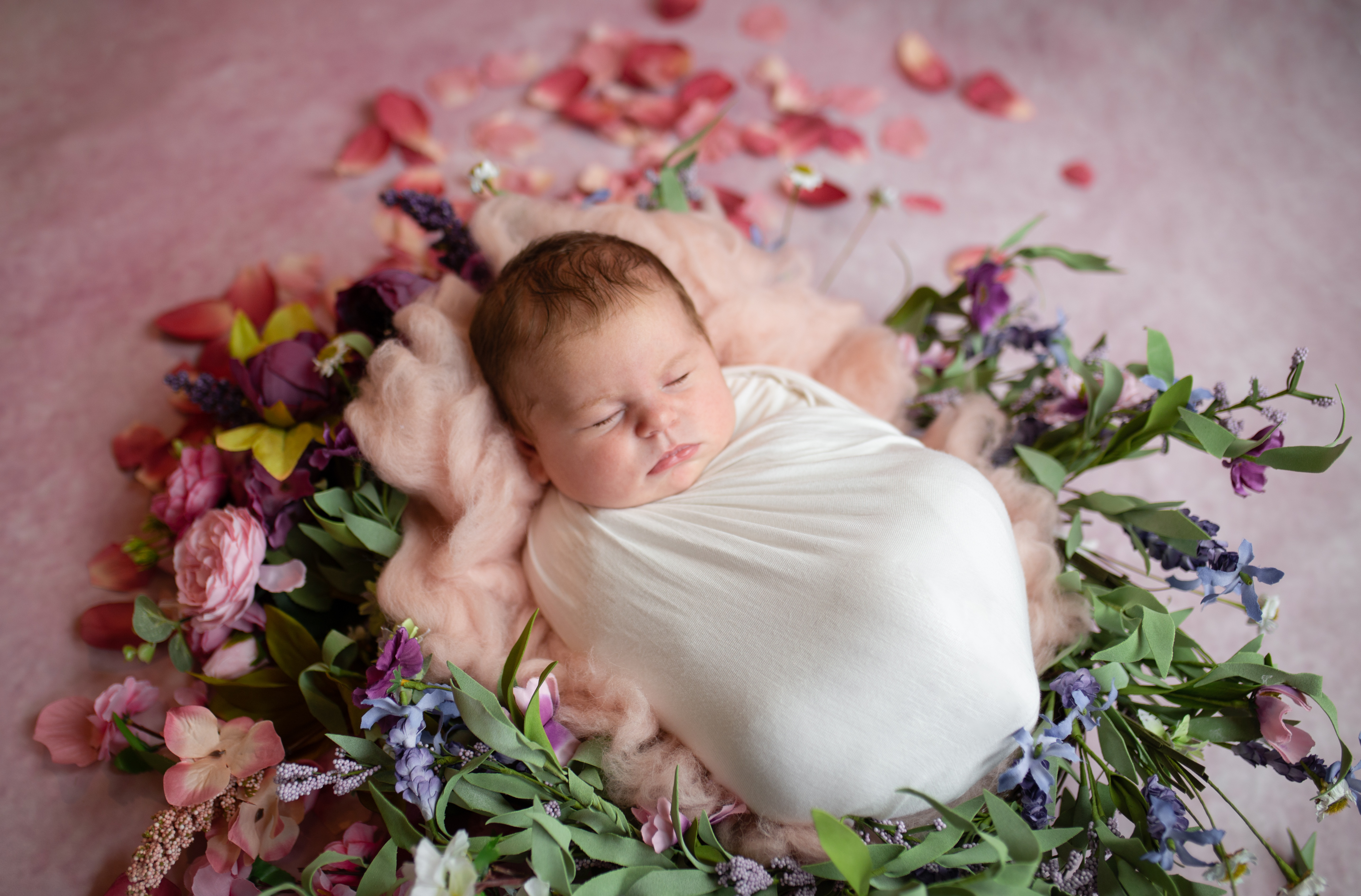 Baby Holly Preview-4