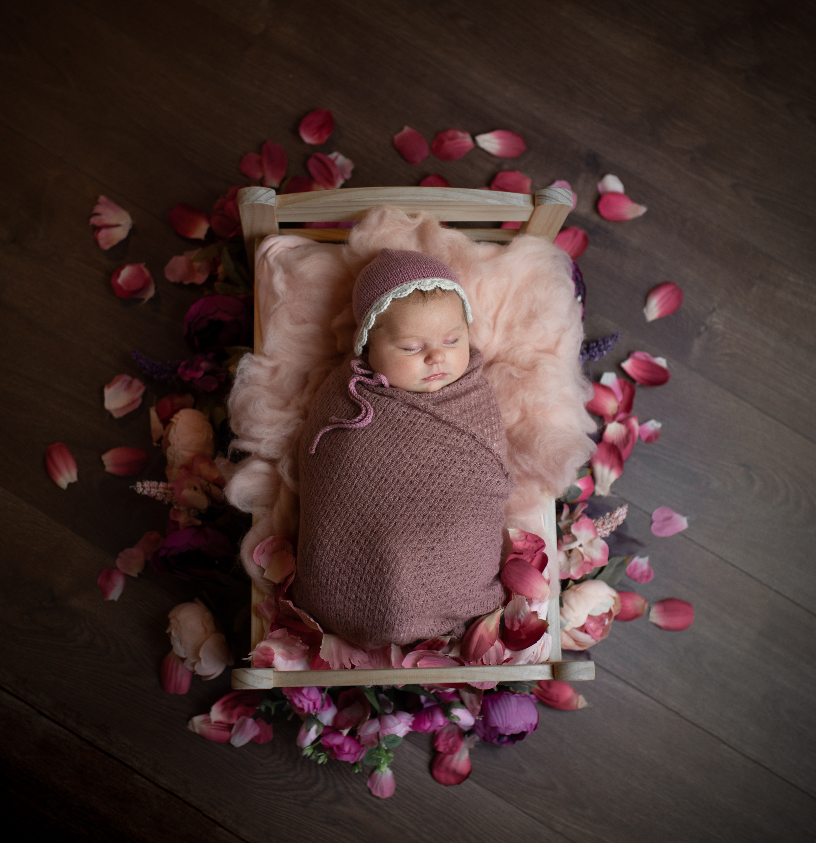 Baby Holly Preview-2