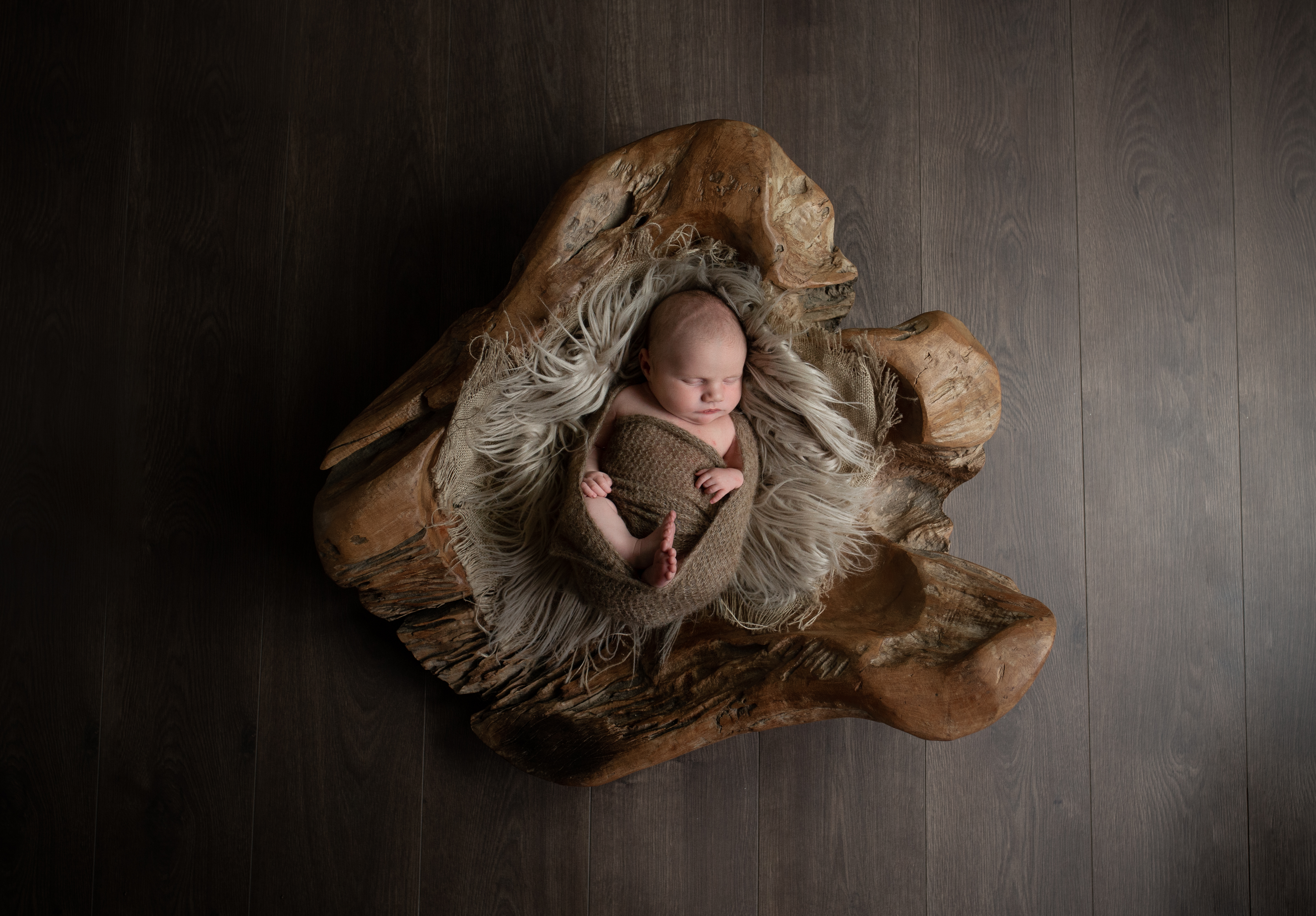 Baby Alby-4