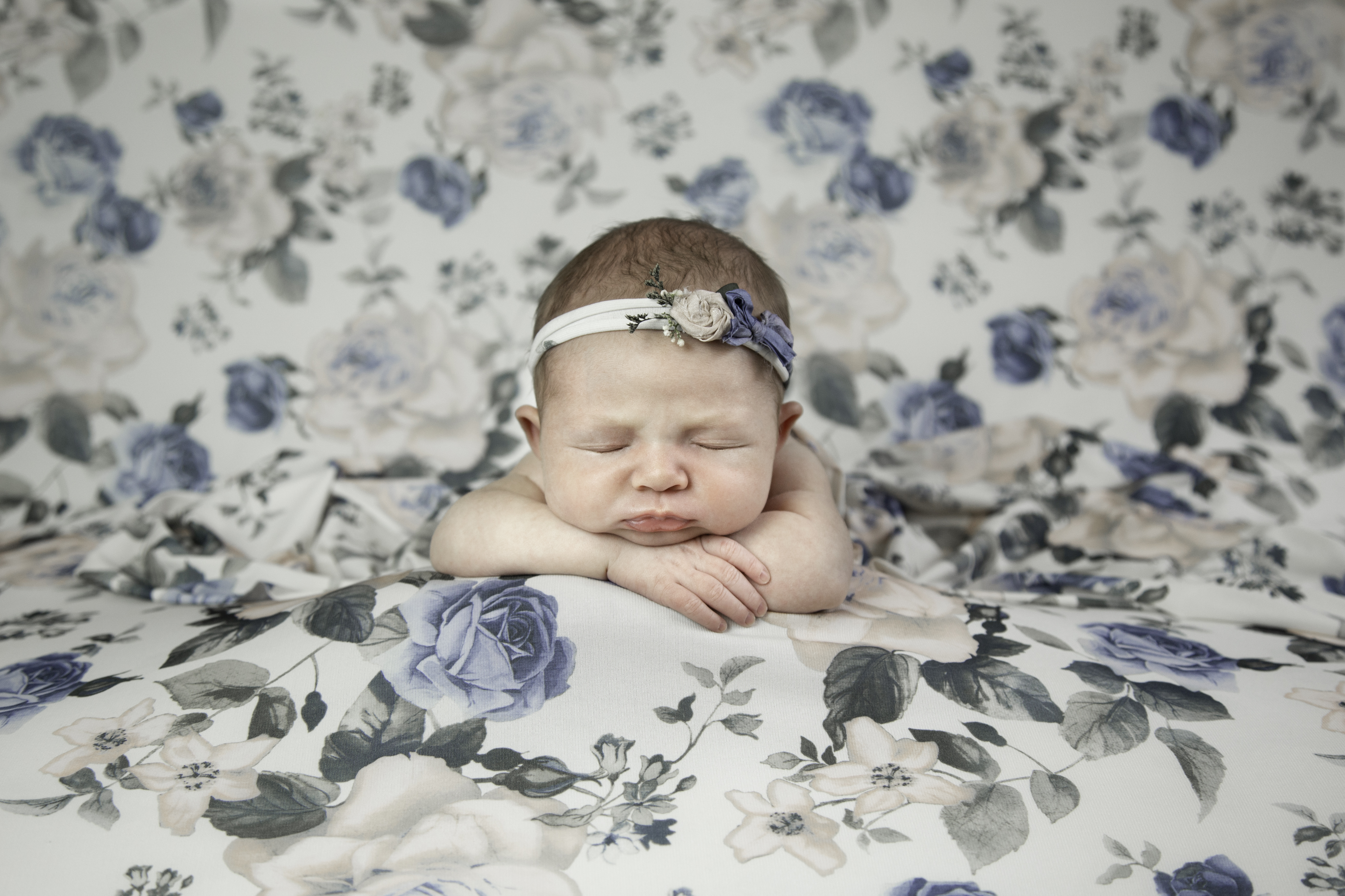Baby Rosie Preview-2