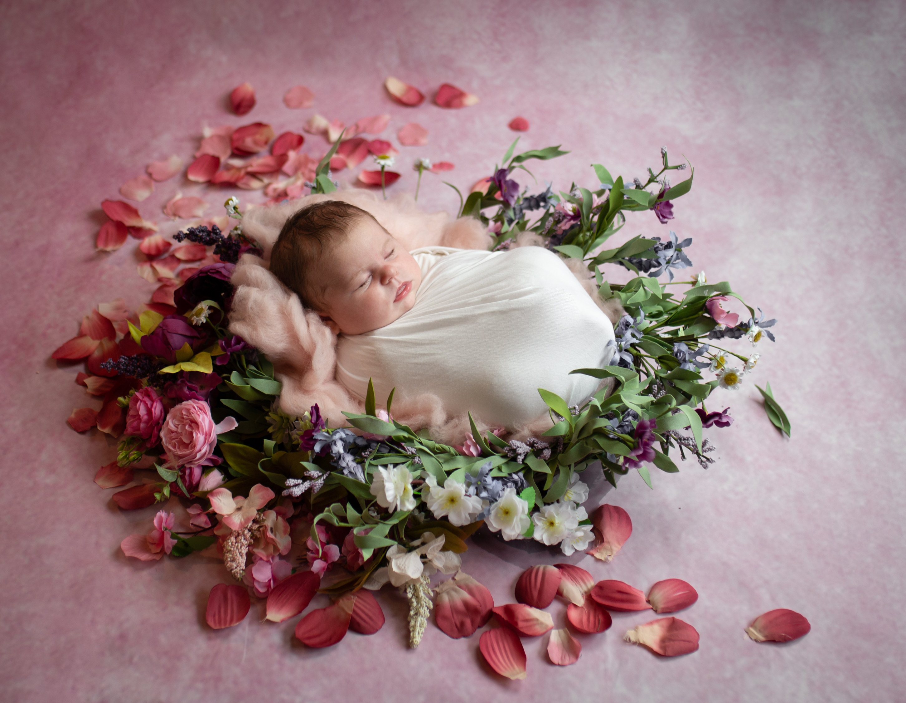 Baby Holly Preview-5
