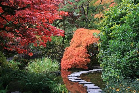 japanese-garden-2898777_1920.jpg