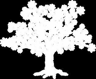 Logo Tree white transp.png
