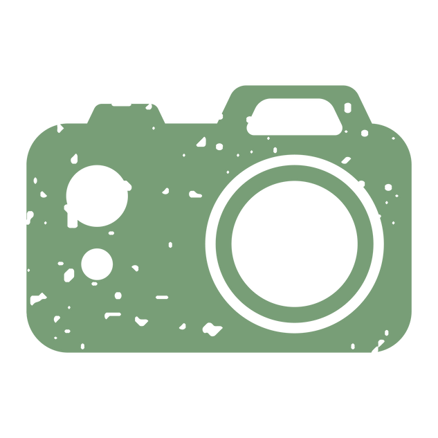 Mini icon camera green.png