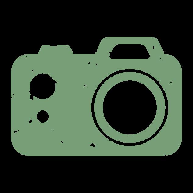 Mini icon camera green.png
