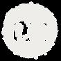 Mini icon camera circle white.png