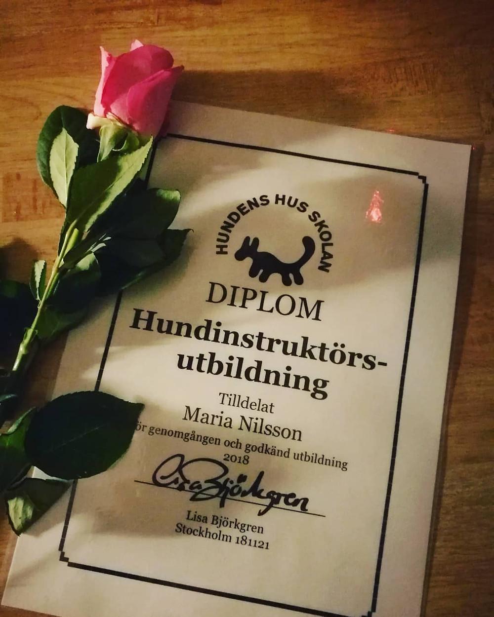 Diplom för Hundinstruktörsutbildning