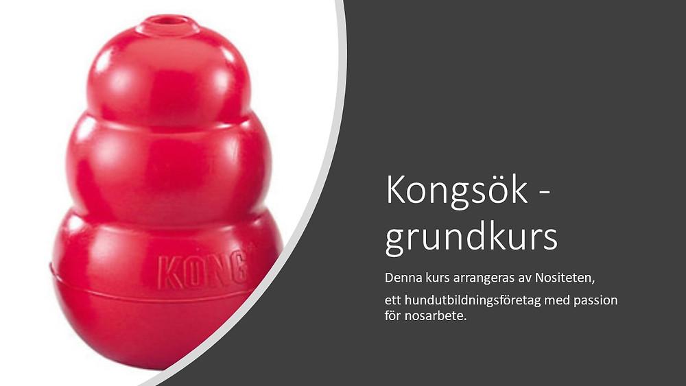 Power Point Första teoribilden Kong-sök