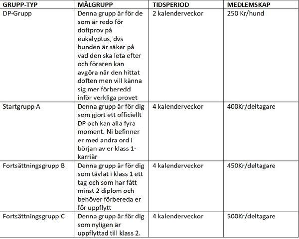 Coachgrupp_tabell_Bild.jpg