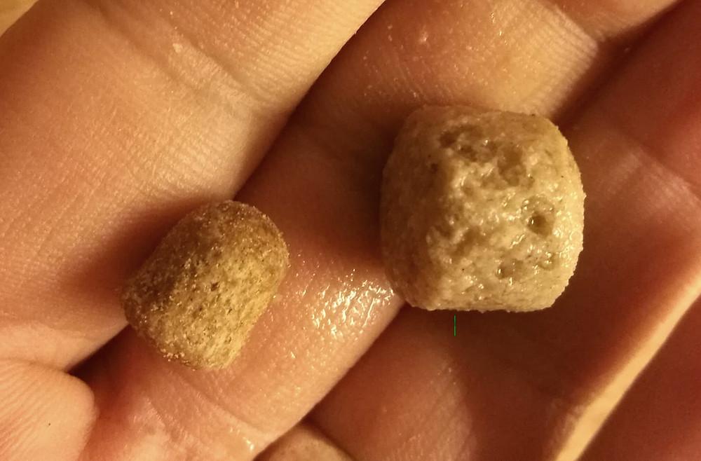 En torrfoderkula och en som är blötlagd, i jämförelse