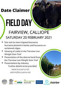 Field Day Fairview.jpg