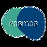 kosmos 1_edited.png