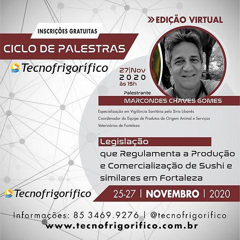 PALESTRAS MARCONDES TECNO VIRTUAL 2020.j