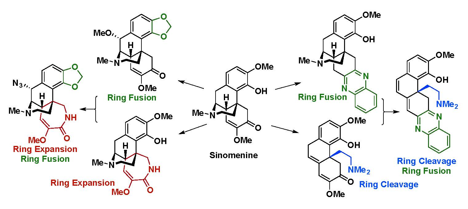 Complex compounds from Sinomenine