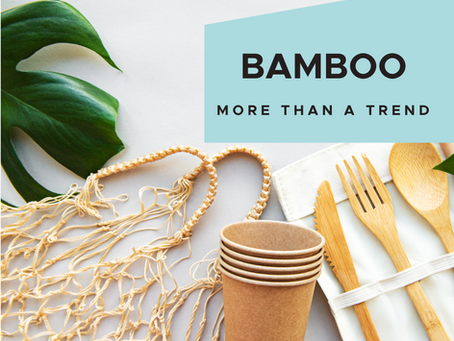 More Than a Trend: Saving the Planet with Sustainable Bamboo