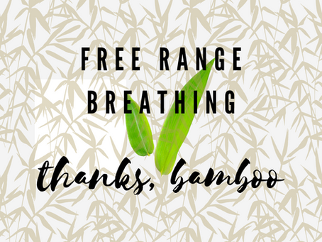 Free Range Breathing: Brought to You by Bamboo
