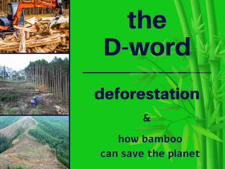 The D-Word: Let's Talk About Deforestation & How Bamboo Can Save the World