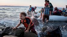 Raposas entre os Refugiados