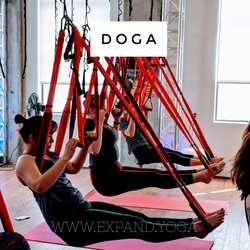 Expand DOGA Apr 15 (23)