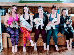 Expand DOGA Apr 15 (5)