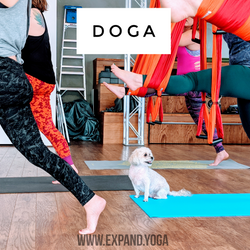 Expand DOGA Apr 15 (14)