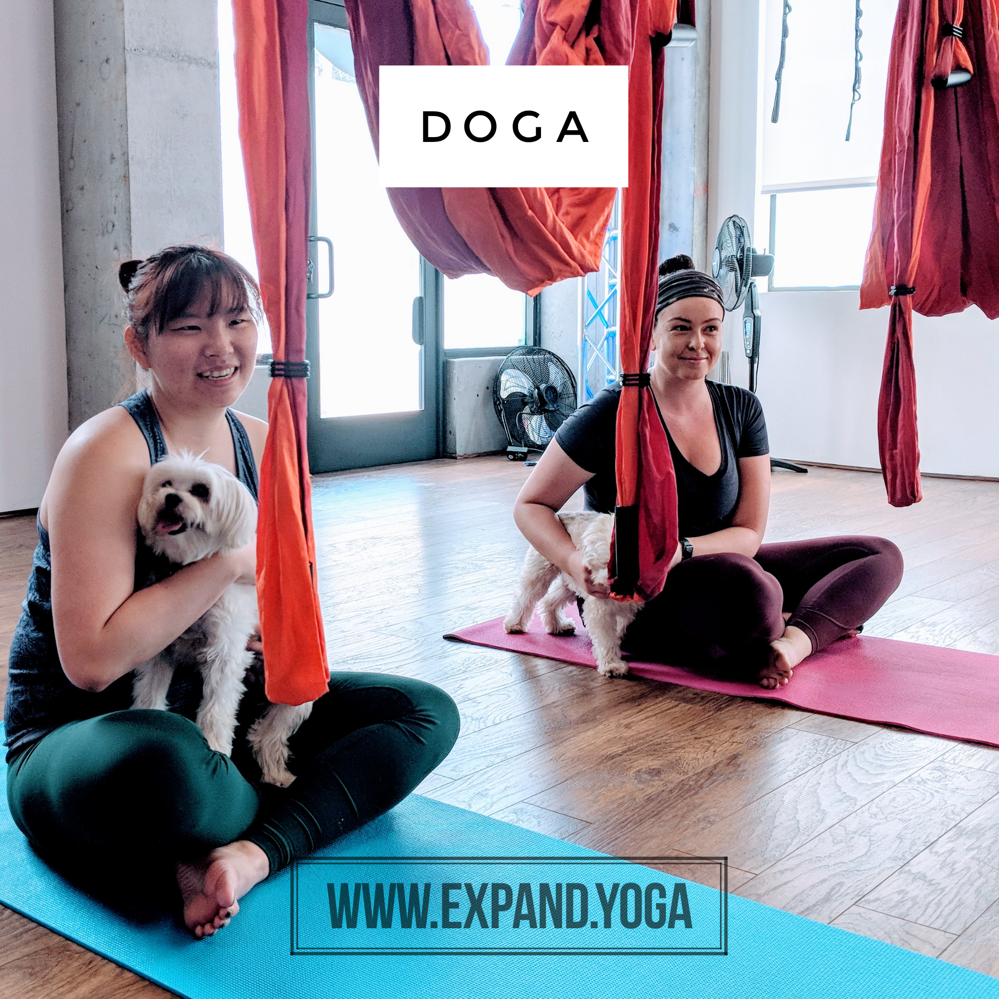 Expand DOGA Apr 15 (9)