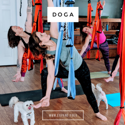 Expand DOGA Apr 15 (13)