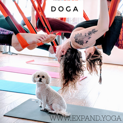 Expand DOGA April 15'18