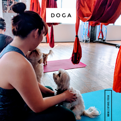 Expand DOGA Apr 15 (8)