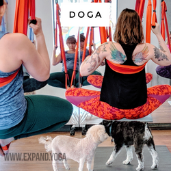 Expand DOGA Apr 15 (19)