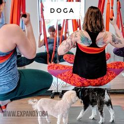 Expand DOGA Apr 15 (19)