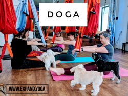 Expand DOGA Apr 15 (3)