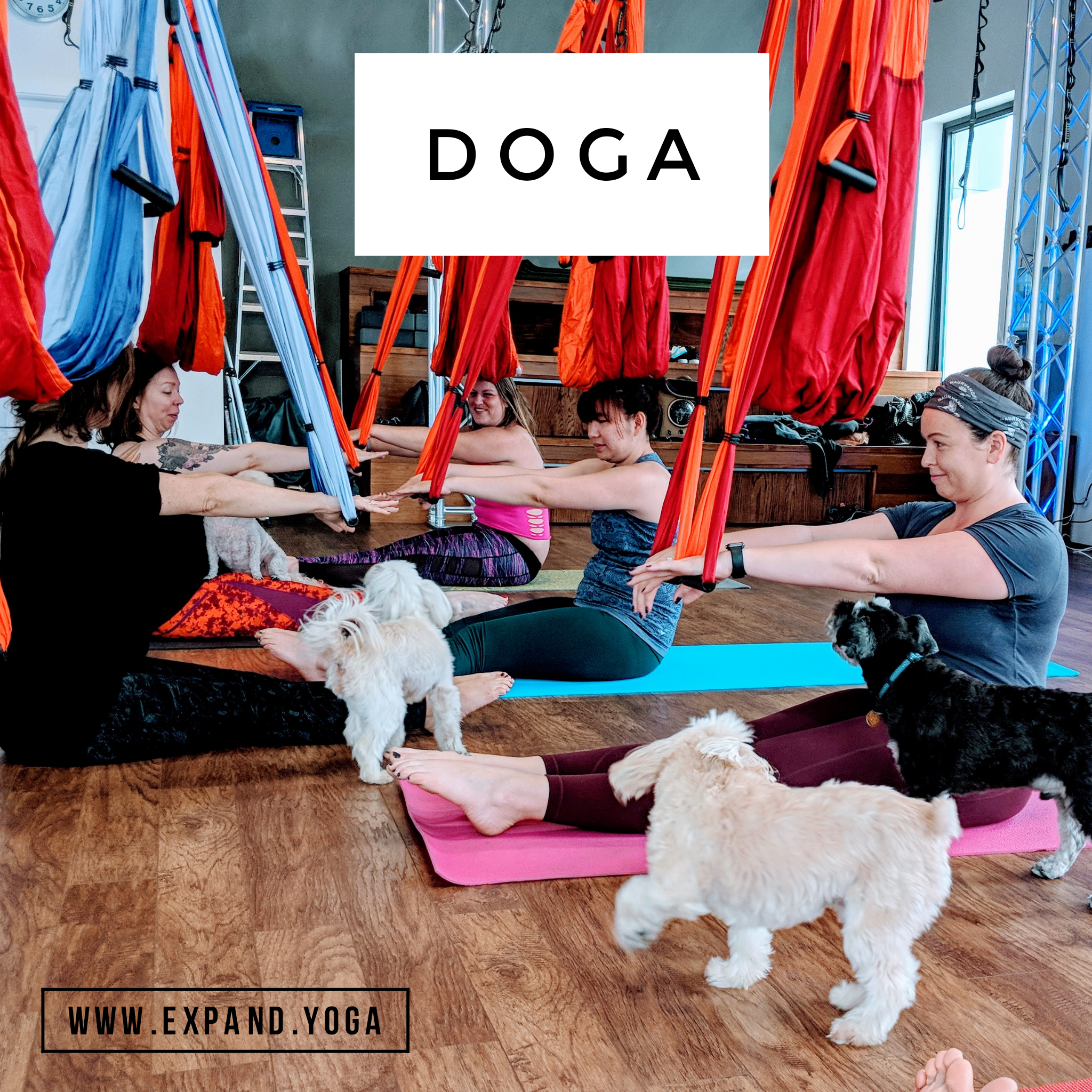 Expand DOGA Apr 15 (1)