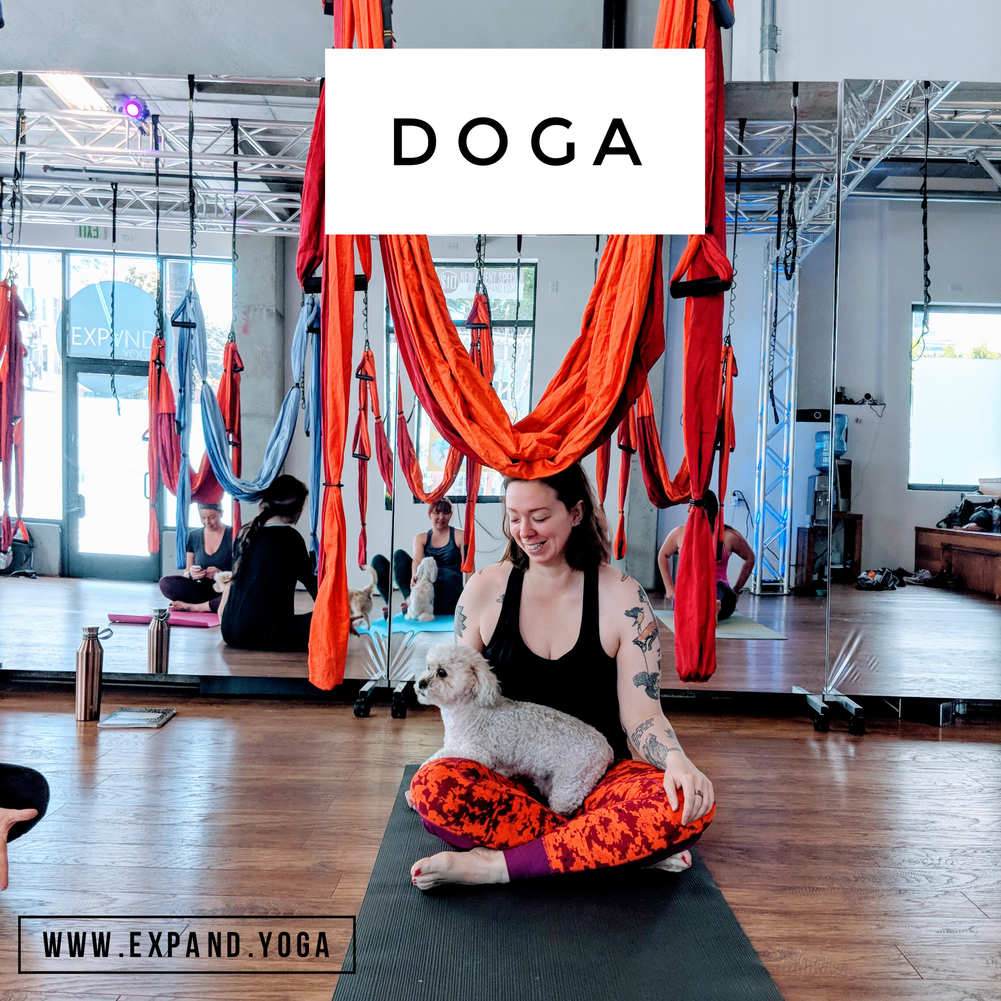 Expand DOGA Apr 15 (2)