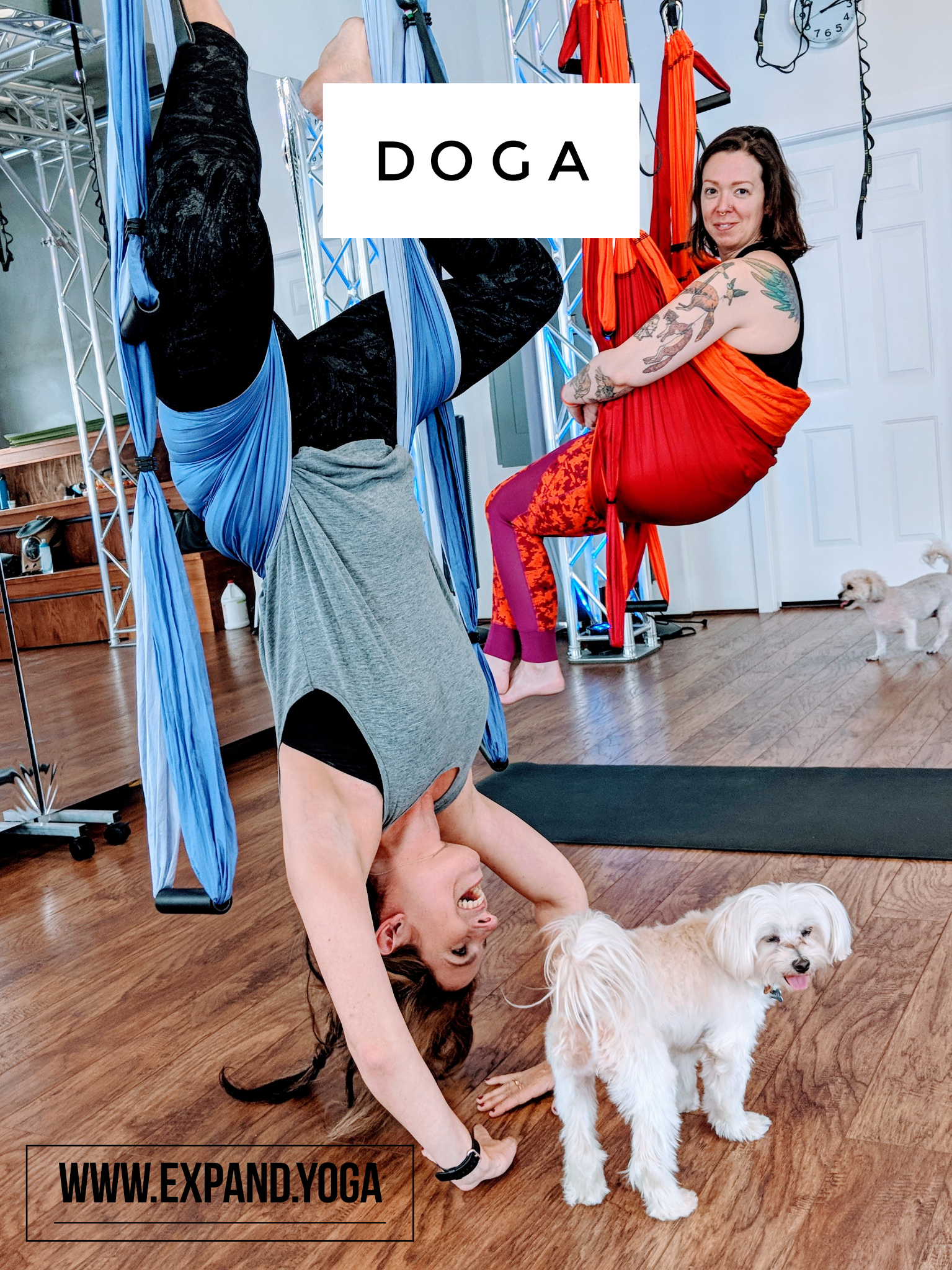 Expand DOGA Apr 15 (6)