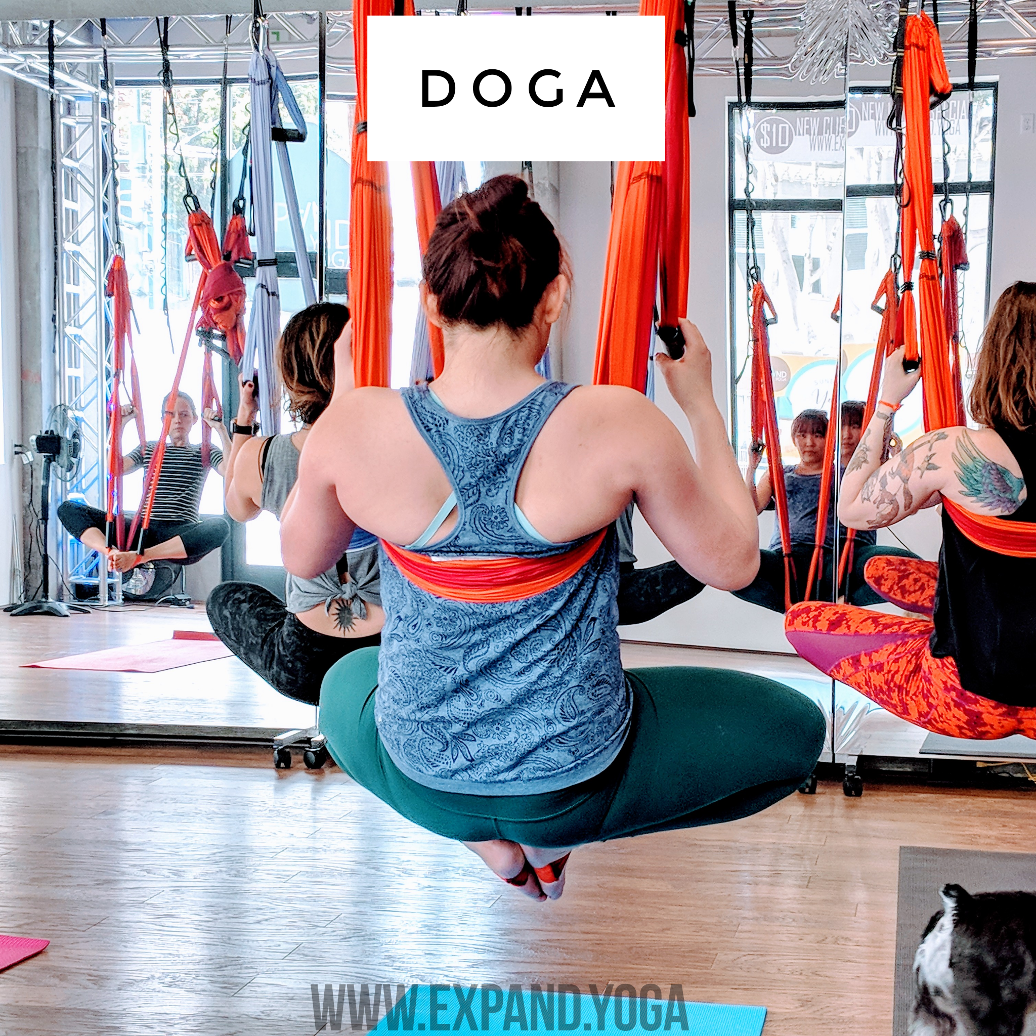 Expand DOGA Apr 15 (18)