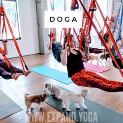 Expand DOGA Apr 15 (24)