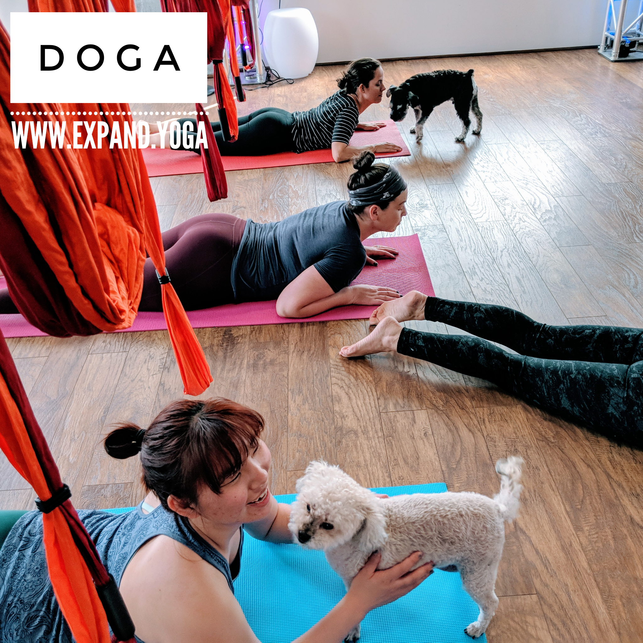 Expand DOGA Apr 15 (25)