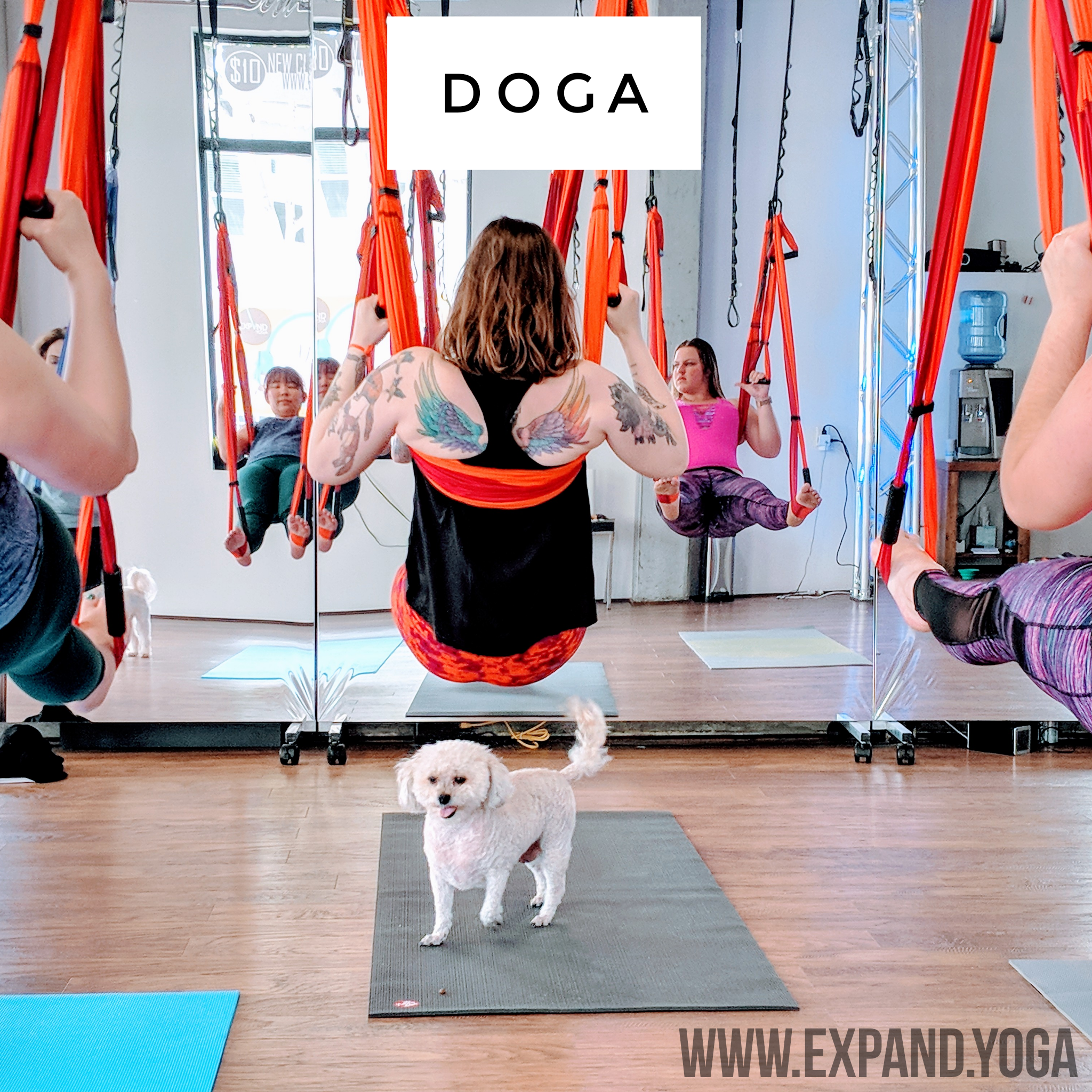 Expand DOGA Apr 15 (17)