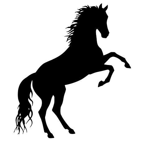horse-silhouette-1542876883cSE.jpg