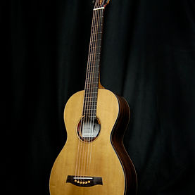 parlor guitar with amazing rosette