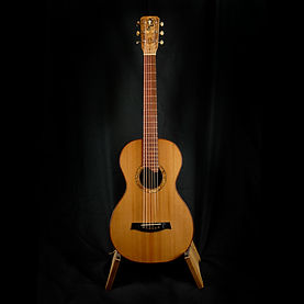 unique parlor guitar
